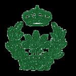 Escudo COIAA