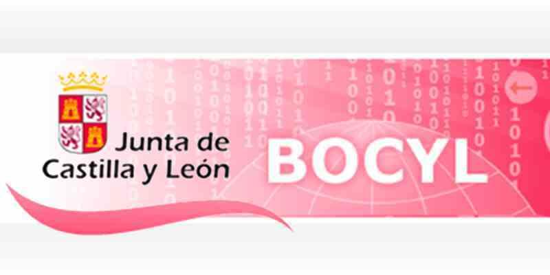 BOCYL: Suspensión de los exámenes de la convocatoria de mayo de 2020 para  la obtención de los carnés profesionales y certificados de cualificación  individuales | COPITI LEÓN